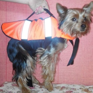 Спасательный жилет для небольшой собаки, размер S, вес до 4 кг.